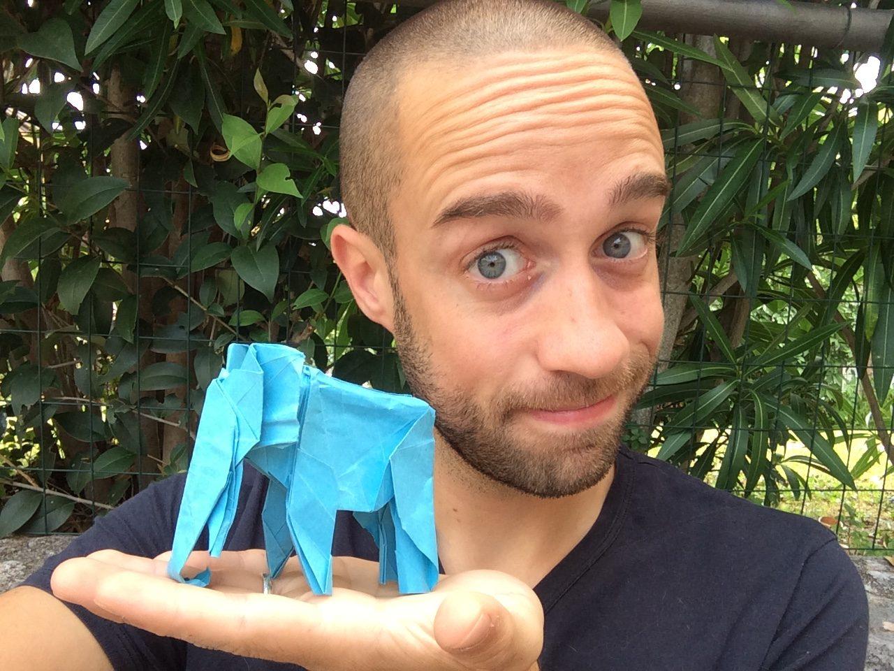 Il magico Mondo degli Origami del mago Dylan