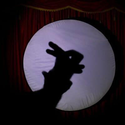 Ombra coniglio